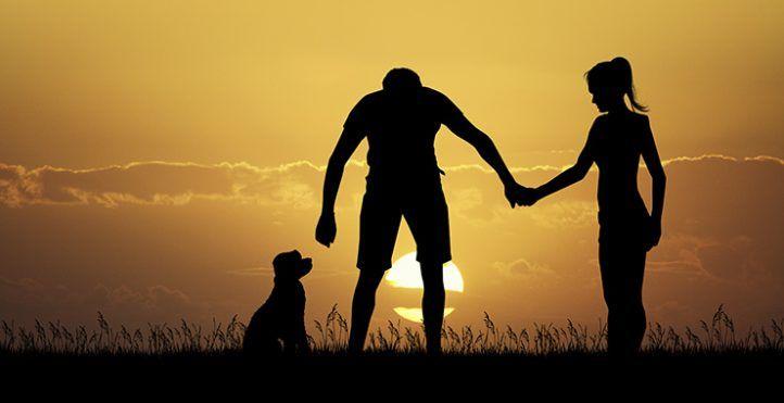 Escapada romántica con perro cerca de Valencia
